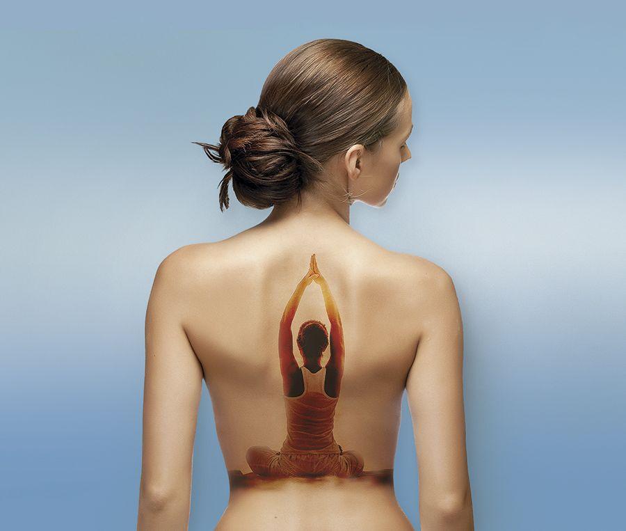 armonic body